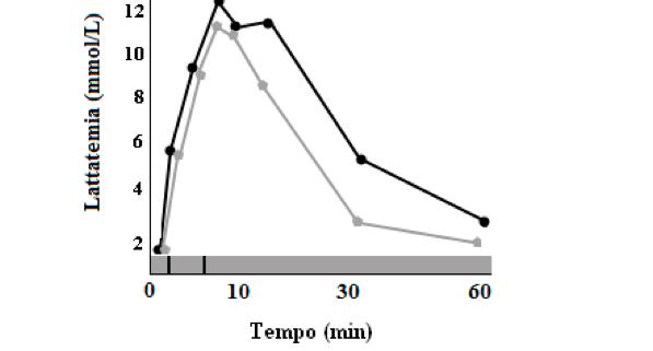 NBF Acidi Grassi Omega 3 e Recupero Attivo nel cavallo atleta